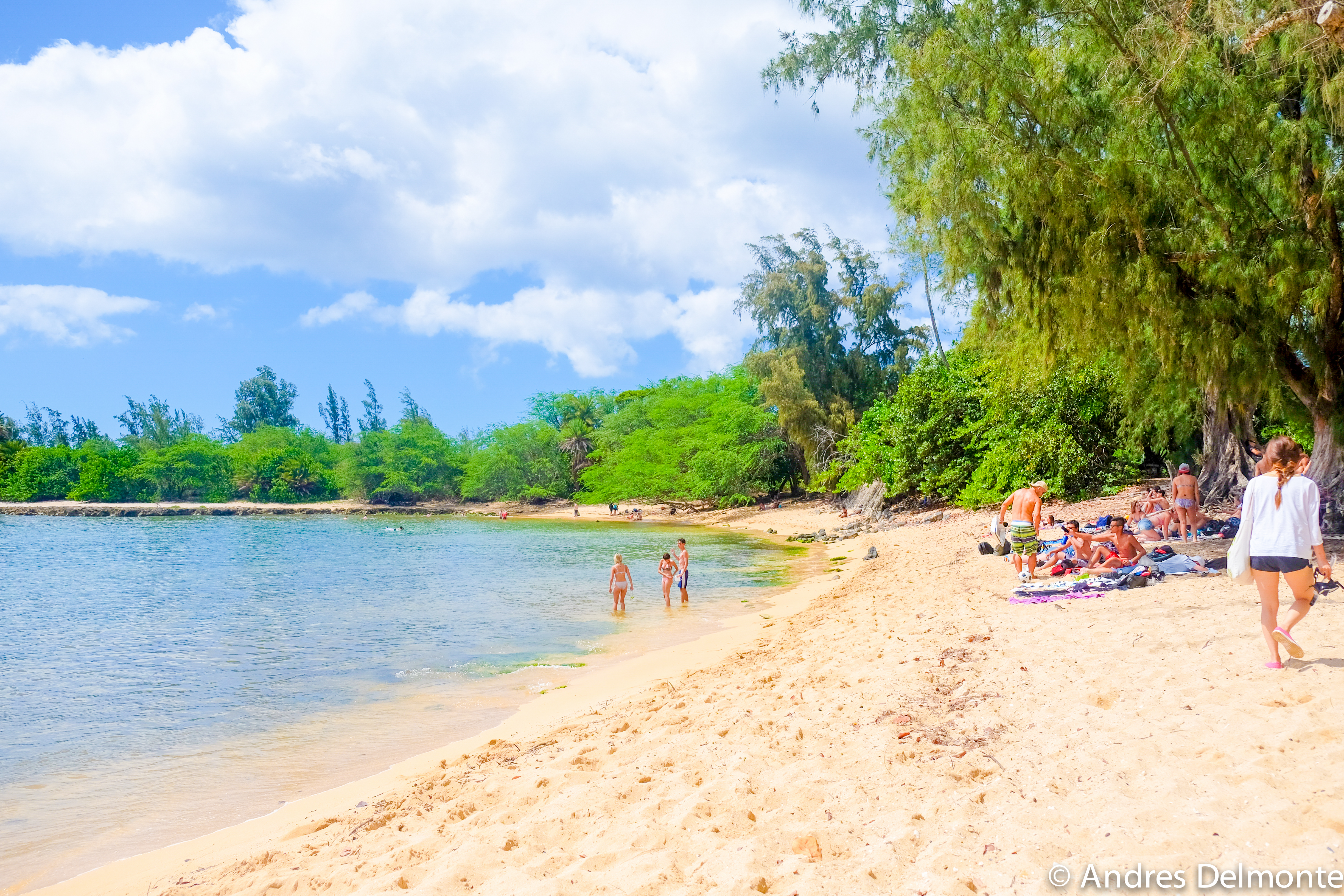 Noon at North Shore, Oahu, Ohana Circle Island Tour